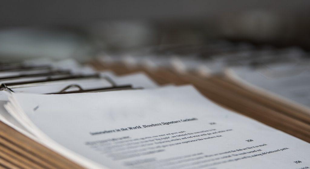 Welfare Fraud Paper